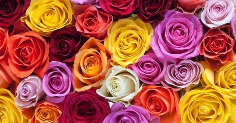 Gėlės taip pat paįvairina, papuošia bet kokią praktišką dovaną